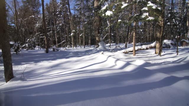 vídeos de stock e filmes b-roll de neve sombras timelapse - plano picado