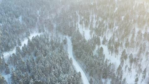 snow skii road in tomamu, hokkaido, japan - hill stock videos & royalty-free footage