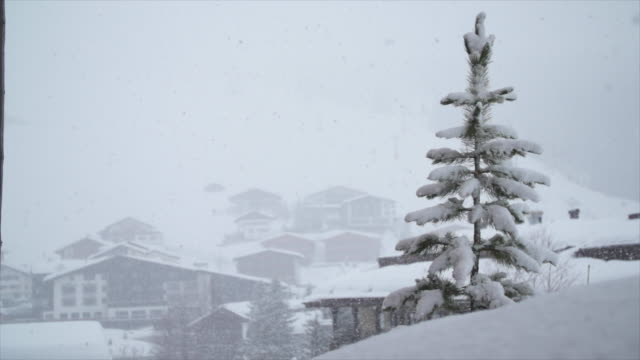 snow snowing on a tree in the winter near a village. - slow motion - austria stock videos & royalty-free footage