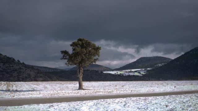 snow storm - ozgurdonmaz stock videos and b-roll footage