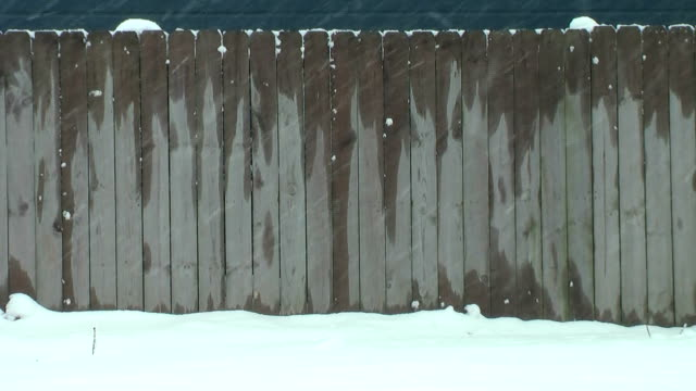 snow storm (hd) - fence stock videos & royalty-free footage