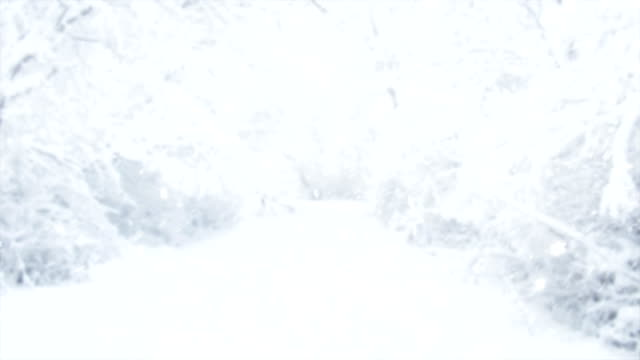 4k snow - snow cornice stock videos and b-roll footage