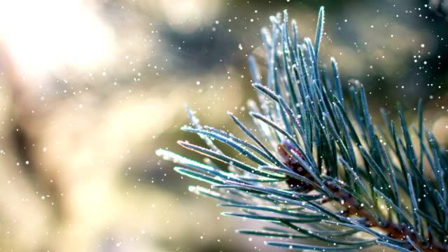 3dカメラモーション左または右(ループ4k + クロマキー)を持つ雪。3d の外観を作るために、シーンに雪を追加します。 - クリスマスカード点の映像素材/bロール