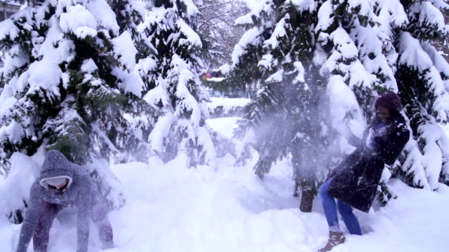 snowball with best friend on winter vacation in the forest - throwing stock videos & royalty-free footage