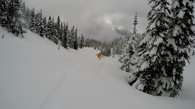 Snowboarding a tree run in the powder
