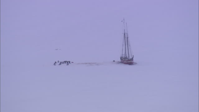 ws snowbound ship resting in vast expanse of ice / svalbard, norway - stationary process plate stock videos and b-roll footage