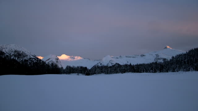 vídeos de stock, filmes e b-roll de snowcapped mountain at sunset timelapse - pinaceae