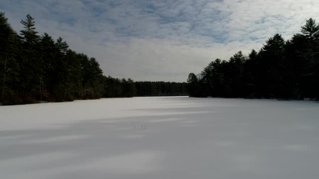 snow-covered lake surrounded by trees - frozen stock videos and b-roll footage