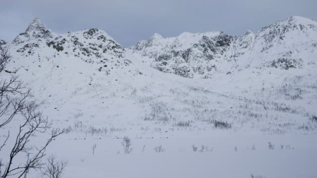 snow-covered mountains - peter snow stock videos & royalty-free footage