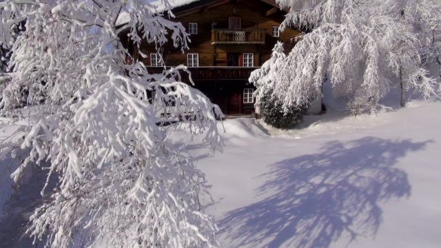 Snow-covered trees surround a Tyroler chalet.