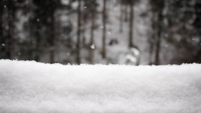 Snowfall and the snowdrift - SLOW MOTION