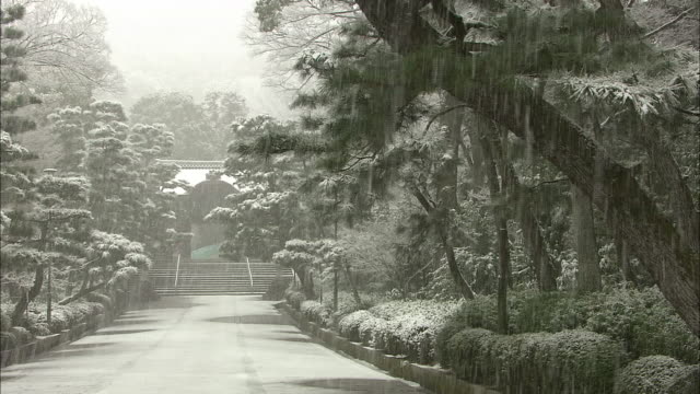 snowfall in kyoto - kyoto temple stock videos and b-roll footage