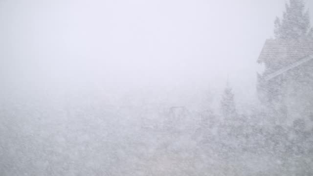 snowfall on blurred out landscape - snow storm stock videos and b-roll footage