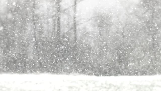 Snowfall on blurred out landscape