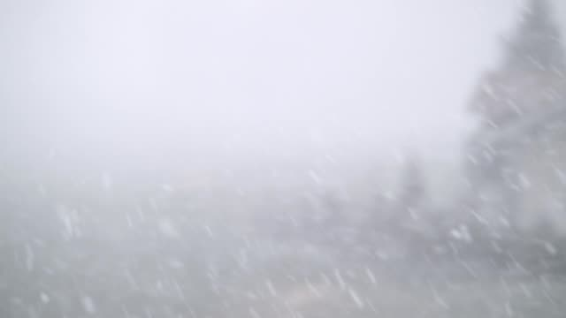 snowfall on defocused landscape - blizzard stock videos & royalty-free footage