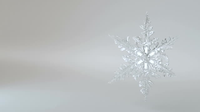 Snowflake Alpha and Loop Background