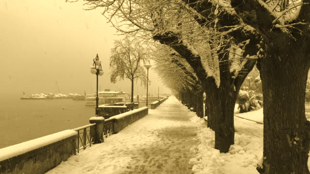 Snowing on Walkway with Trees and Alpine Lake with Sepia Toned