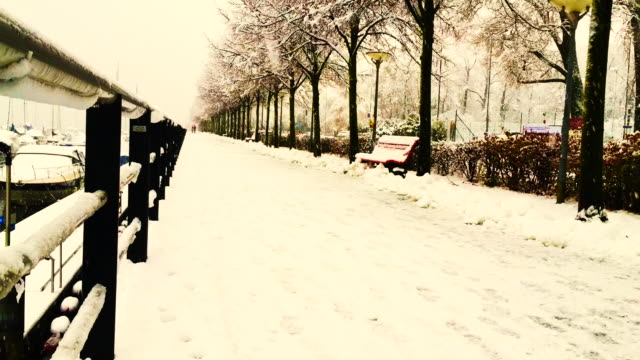 Snowing on Walkway with Trees and Railing with Sepia Toned