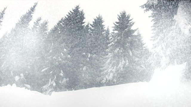 vídeos de stock, filmes e b-roll de snowing - snow cornice