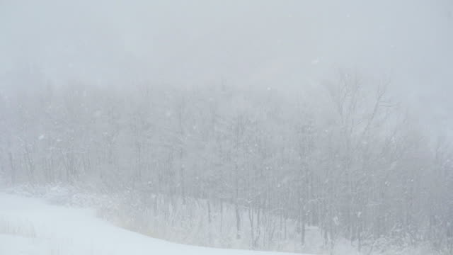 snowing winter - 秋田県点の映像素材/bロール
