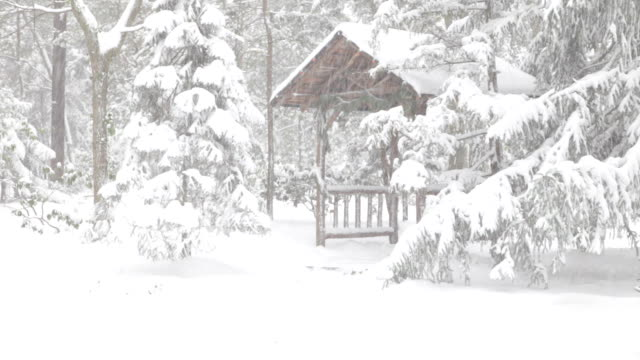 snowing, with gazebo in woods - emergency shelter stock videos & royalty-free footage