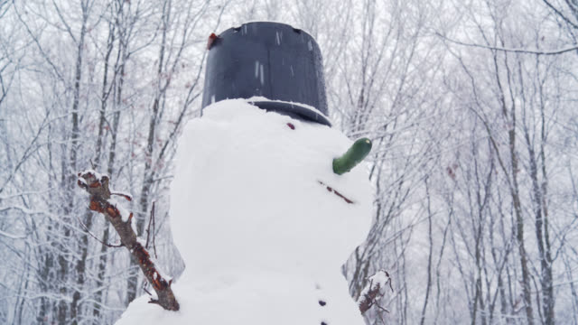 Snowman at the backyard under the snowfall in the winter's day
