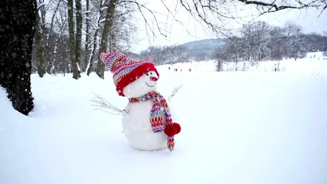 schneemann im winter landschaft - schneemann stock-videos und b-roll-filmmaterial