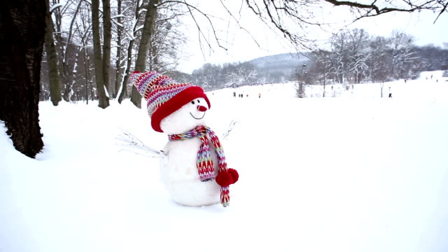 snowman in winter landscape - snowman stock videos & royalty-free footage