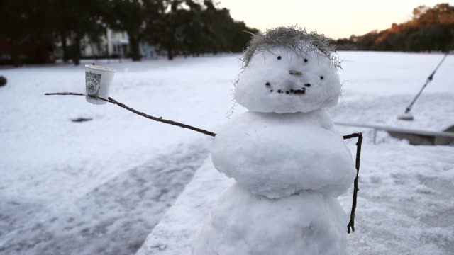 stockvideo's en b-roll-footage met a snowman is seen as snow that fell yesterday and cold weather blanket the area on january 4 2018 in savannah georgia from maine to florida every... - georgia us state
