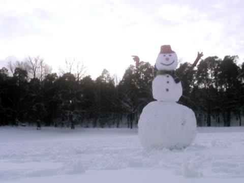 stockvideo's en b-roll-footage met a snowman sweden. - menselijke neus