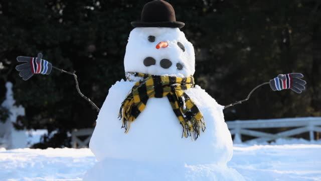 ms snowman with hat and scarf / richmond, virginia, usa - schneemann stock-videos und b-roll-filmmaterial