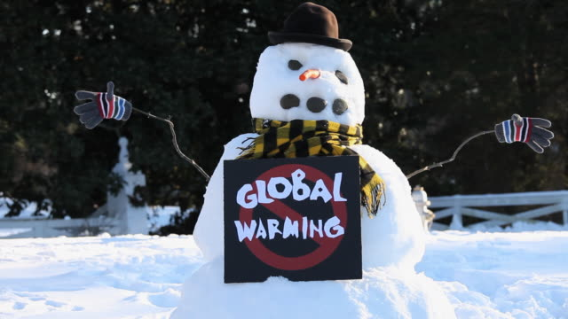 ms snowman with 'no global warming' sign / richmond, virginia, usa - schneemann stock-videos und b-roll-filmmaterial