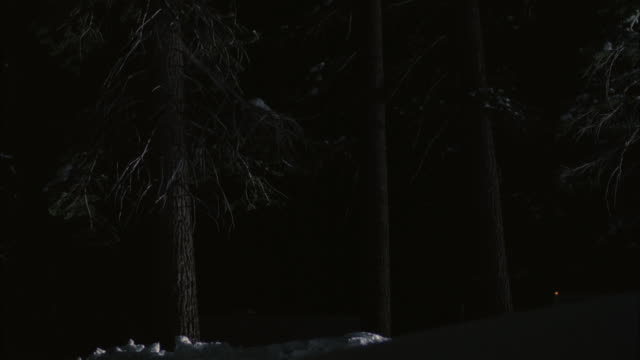ws slo mo pan snowmobile jumping in snow covered forest / mammoth lakes, california, usa - mammoth lakes video stock e b–roll
