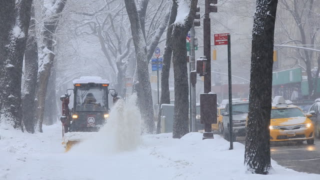 Snowplow is running the Fifth Avenue Sidewalk which is surrounded by snowy trees line.Traffic at Fifth Avenue is slow moving.