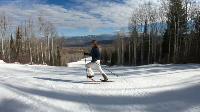 snowshoe, snowshoeing - aspen tree stock videos & royalty-free footage