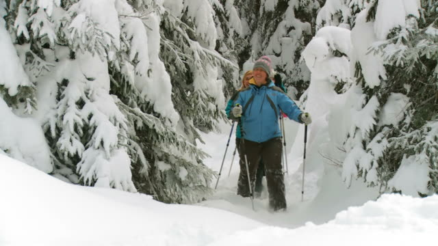 vidéos et rushes de hd : la marche en raquettes à neige - randonnée en montagne