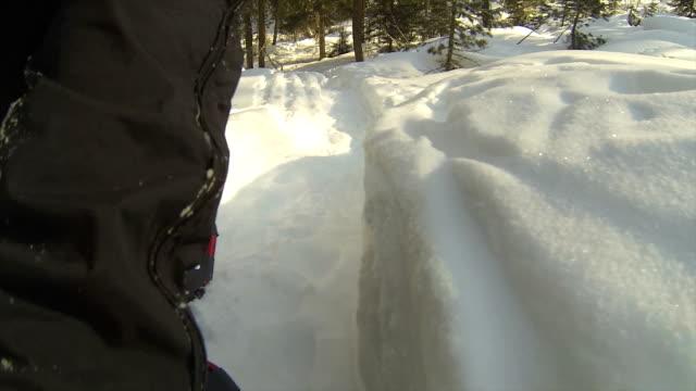 """vídeos de stock, filmes e b-roll de """"pov caminhadas com raqueta de neve no inverno paisagem"""" - ponto de vista de câmera"""
