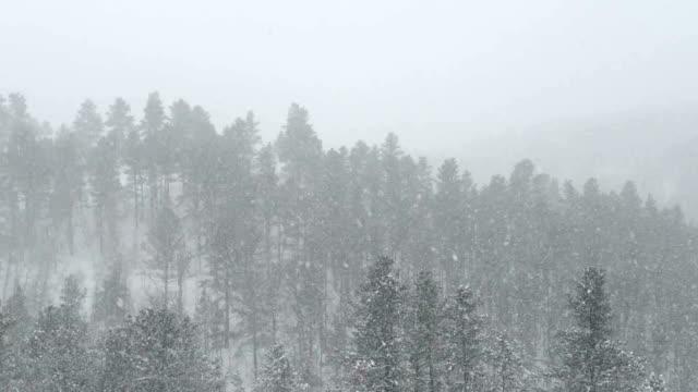 snowstorm - dakota del sud video stock e b–roll