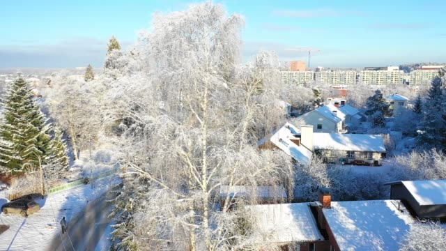 Snowy and frosty trees, flying over villa area, winter day