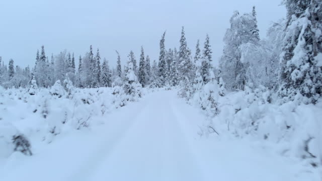 snowy blizzard country road in lapland sweden - country road stock videos & royalty-free footage