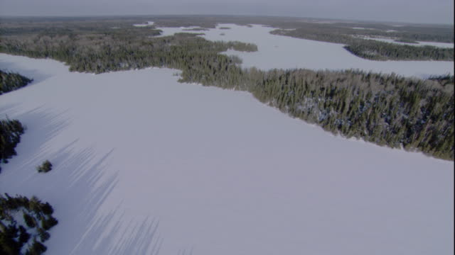 a snowy boreal forest surrounds a frozen inlet in canada. available in hd. - taiga stock videos and b-roll footage