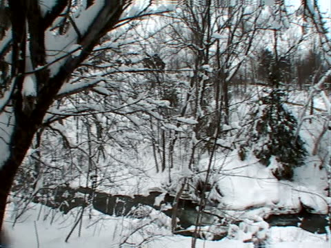 snowy creekbanks and covered bridge - artbeats stock videos & royalty-free footage