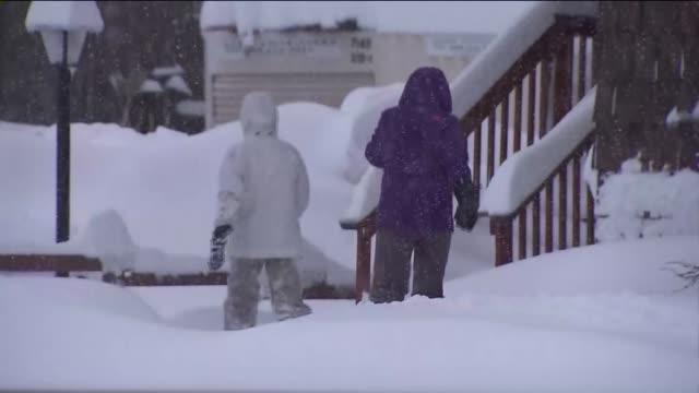vídeos y material grabado en eventos de stock de snowy day in big bear - clima polar
