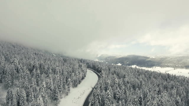 Snowy Forest and Aerial Views over an Alpine forest and mountain Road
