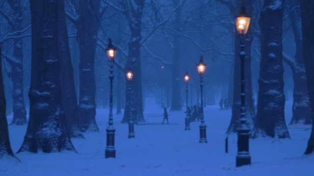 snowy green park in central london at dusk. - snow stock videos & royalty-free footage
