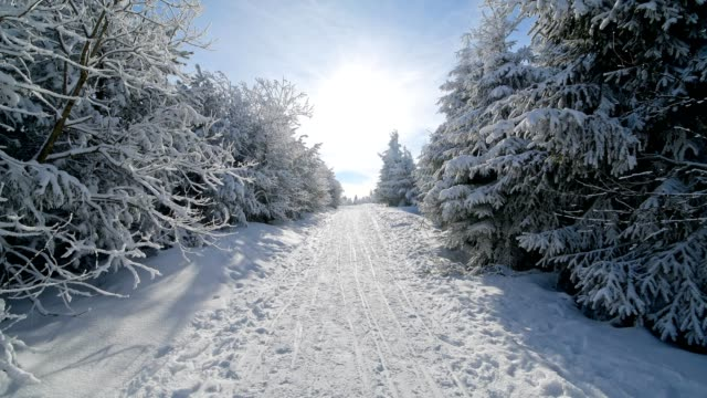 snowy hiking trail with sun in winter, mount fichtelberg, oberwiesenthal, erzgebirge, ore mountains, saxony, germany, europe - saxony stock videos & royalty-free footage