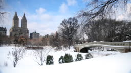 Snowy Landscape In Central Park