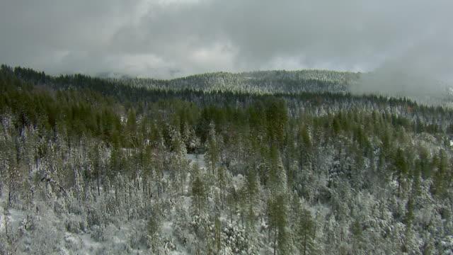 snowy landscape in mountains of ca - 北半球点の映像素材/bロール