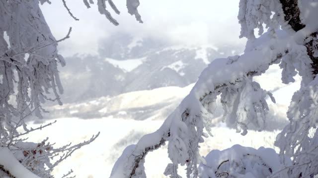 vídeos y material grabado en eventos de stock de paisaje nevado - glaseado para postres