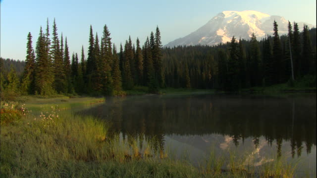 snowy mount rainier reflects in a scenic lake. - mt rainier stock videos & royalty-free footage